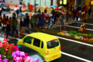 横断歩道の写真素材 [FYI00248622]