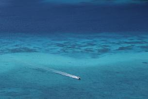 珊瑚の海を走る船の素材 [FYI00248705]