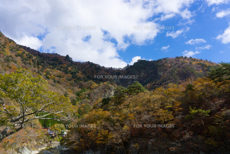 那須塩原 七ッ岩の吊橋から川を見るの素材 [FYI00248976]