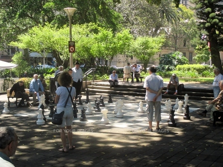 木陰でチェスの写真素材 [FYI00249059]