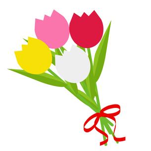 チューリップ(花束)の写真素材 [FYI00249205]