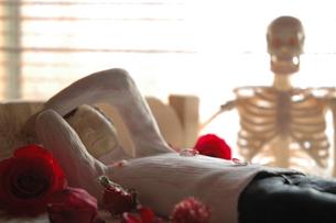 人形写真 骸骨の写真素材 [FYI00249247]