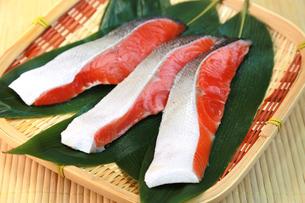 鮭の切り身の写真素材 [FYI00249284]