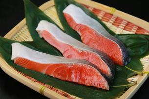 鮭の切り身の写真素材 [FYI00249286]