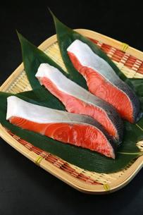 鮭の切り身の写真素材 [FYI00249296]