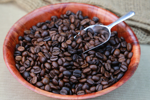 コーヒー豆の写真素材 [FYI00249315]