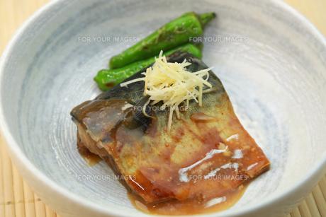 鯖の味噌煮の写真素材 [FYI00249439]