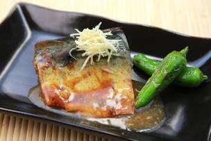 鯖の味噌煮の写真素材 [FYI00249440]