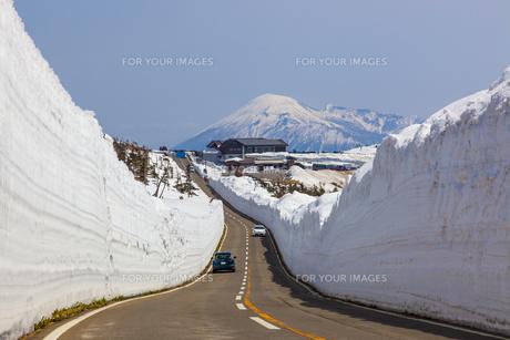 八幡平 雪の回廊の素材 [FYI00249596]