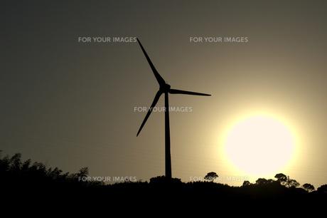 風車の写真素材 [FYI00249929]