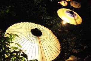 和傘の素材 [FYI00249988]