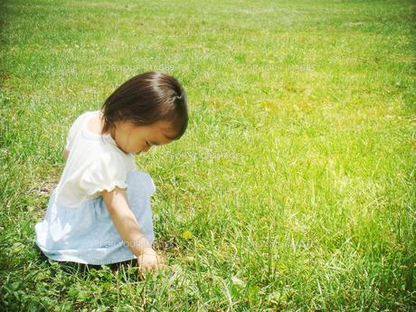 草原でうつむく少女の写真素材 [FYI00250646]