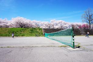 桜の木々の下でテニスをする少年少女の写真素材 [FYI00250680]