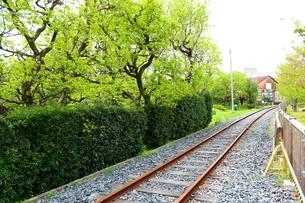 和歌山県 有田川鉄道 廃線路風景の写真素材 [FYI00250732]