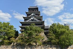 広島城の写真素材 [FYI00250831]
