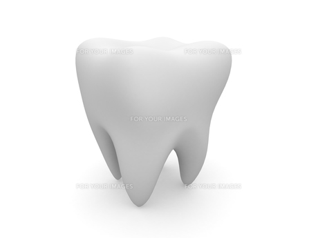 歯のオブジェの写真素材 [FYI00250835]