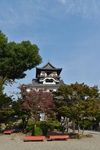 国宝 犬山城の写真素材 [FYI00250858]