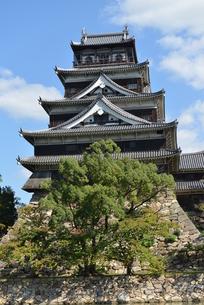 広島城の写真素材 [FYI00250865]