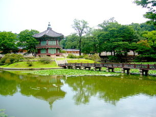 韓国の宮殿の庭園の写真素材 [FYI00250875]