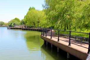 貯水池とベンチの写真素材 [FYI00251042]