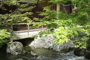 国際庭園編「日本」の写真素材 [FYI00251053]