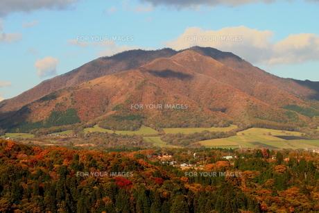 秋の蒜山高原の写真素材 [FYI00251207]