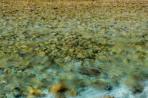 揺れる水面の写真素材 [FYI00251244]