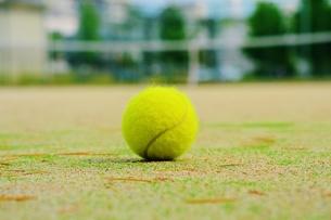 テニスコートとボールの写真素材 [FYI00251253]