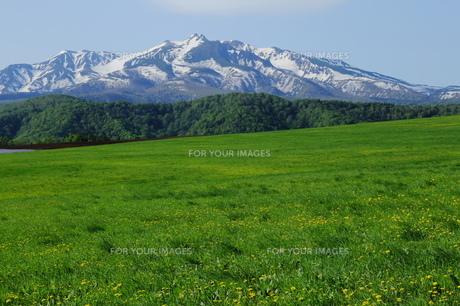 草原と大雪山の素材 [FYI00251440]