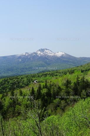 残雪のウペペサンケ山の素材 [FYI00251469]