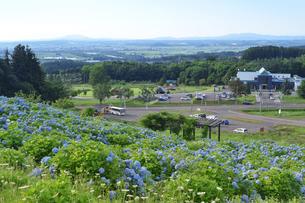 深川市音江町の高台からの眺望の写真素材 [FYI00251555]