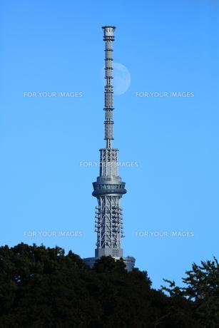 スカイツリーと青空に浮かぶ月の写真素材 [FYI00252414]