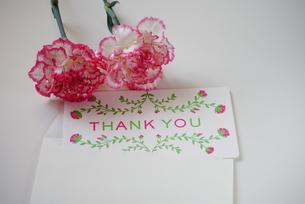 花とメッセージカードの写真素材 [FYI00252708]