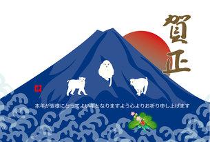 日の出富士に三びきの白い猿の年賀状テンプレートの写真素材 [FYI00252739]