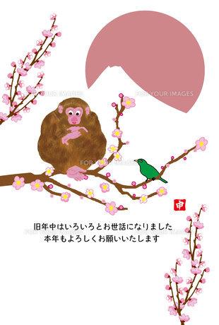 梅の木のサルと鶯と日の出富士のイラスト年賀状テンプレートの写真素材 [FYI00252771]