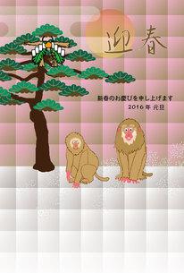 ピンクでフェミニンなサルのイラスト年賀状テンプレートの写真素材 [FYI00252794]