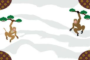 男らしい二匹のサルが松の木にぶら下がっている和モダンなグリーティングカードの写真素材 [FYI00252799]