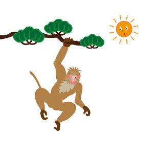 松の木とサルとお日様のイラスト素材の写真素材 [FYI00252854]