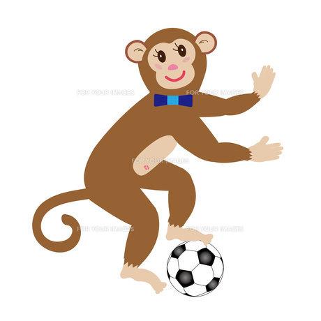 サルとサッカーボールのイラスト素材の写真素材 [FYI00252873]