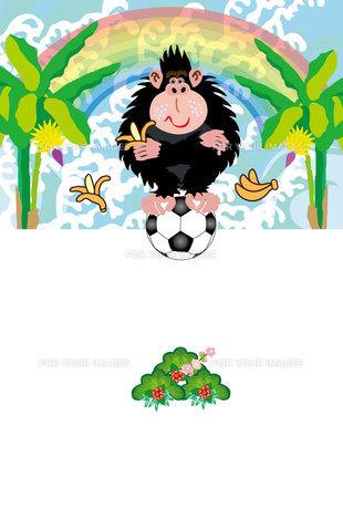 ポップなサルとサッカーボールと虹のポストカードの写真素材 [FYI00252970]
