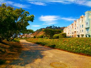 カリフォルニアの海辺の街並みの写真素材 [FYI00253379]