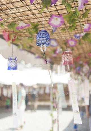 夏の日の風鈴祭りの素材 [FYI00253410]