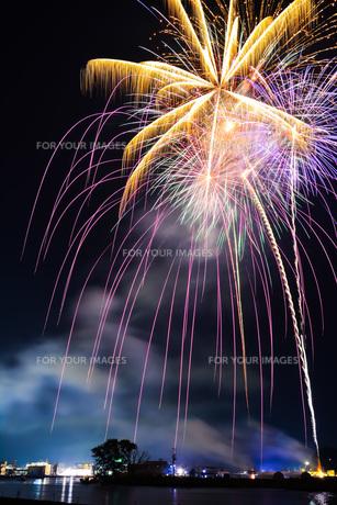 石巻川開き祭り花火大会の写真素材 [FYI00254231]