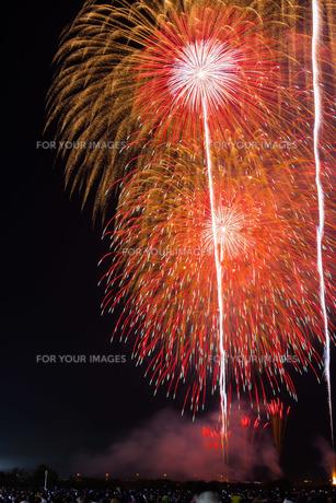 赤川花火記念大会「ヒ・カ・レ・ミ・ラ・イ・ヘ」の写真素材 [FYI00254237]
