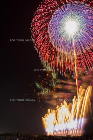 赤川花火記念大会「ヒ・カ・レ・ミ・ラ・イ・ヘ」の写真素材 [FYI00254238]