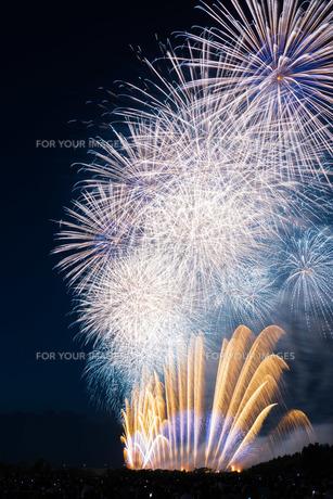 赤川花火記念大会「ヒ・カ・レ・ミ・ラ・イ・ヘ」の写真素材 [FYI00254244]
