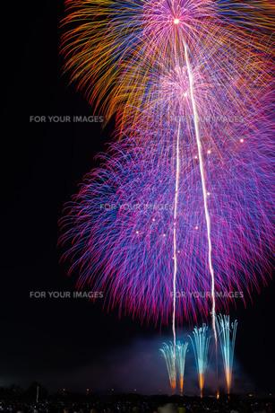 赤川花火記念大会「ヒ・カ・レ・ミ・ラ・イ・ヘ」の写真素材 [FYI00254245]