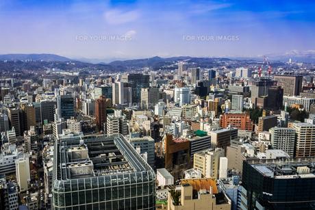 仙台市街を望むの写真素材 [FYI00254256]