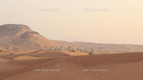 砂漠の写真素材 [FYI00254280]