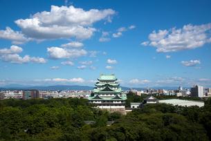 名古屋城の写真素材 [FYI00254308]
